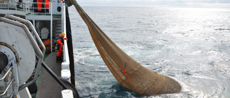 Vi skal blive bedre til at udnytte havets ressourcer