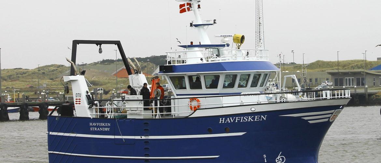 Havfisken deltager i Fiskeriet kommer til Aalborg
